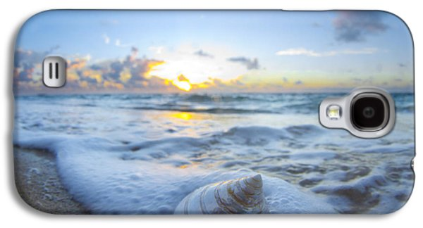 Ocean Art Photography Galaxy S4 Cases - Cone Shell Foam Galaxy S4 Case by Sean Davey