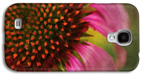 Coneflower Galaxy S4 Case by Darren Fisher