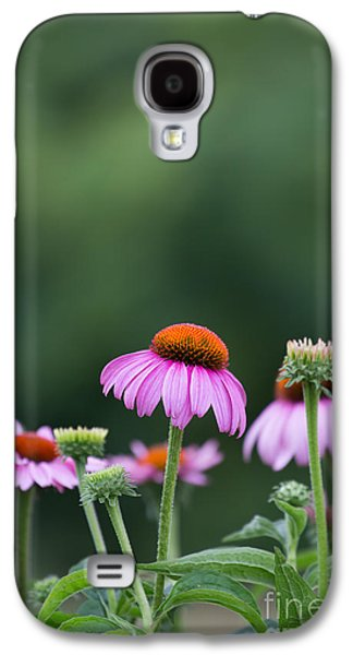 Kaypickens.com Galaxy S4 Cases - Coneflower Galaxy S4 Case by Kay Pickens
