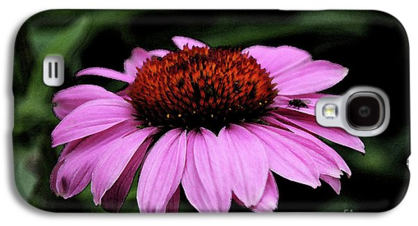 Abstracted Coneflowers Digital Galaxy S4 Cases - Coneflower With Bug Galaxy S4 Case by Christiane Schulze Art And Photography