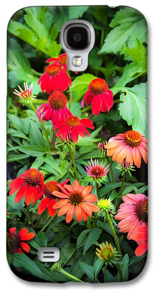 Coneflowers Echinacea Rudbeckia Galaxy S4 Case by Rich Franco