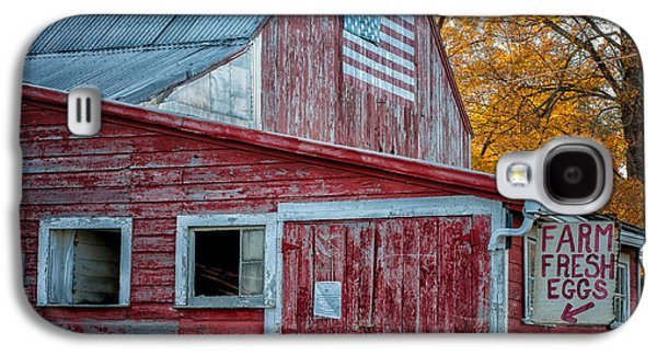 Farmstand Galaxy S4 Cases - Connecticut Farmstand Galaxy S4 Case by Thomas Schoeller
