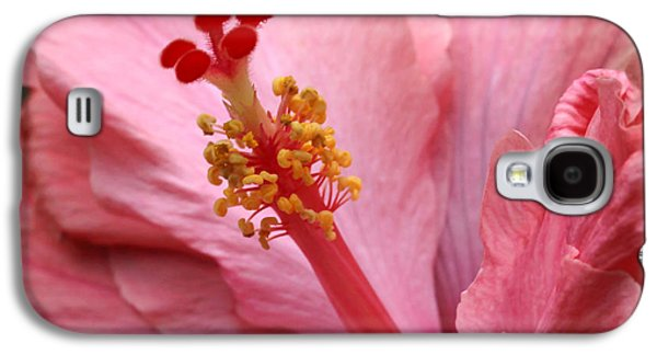 Florida Flowers Photographs Galaxy S4 Cases - Coral Hibiscus Galaxy S4 Case by Sabrina L Ryan