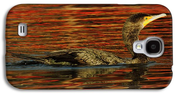 Business Decor Galaxy S4 Cases - Cormorant On Autumn Red Galaxy S4 Case by Robert Frederick