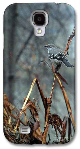Photos Of Birds Galaxy S4 Cases - Cornfield Mocker Galaxy S4 Case by Skip Willits