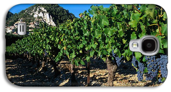 Grapevines Photographs Galaxy S4 Cases - Cote Du Rhone Vineyard, Provence, France Galaxy S4 Case by Panoramic Images