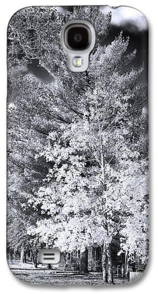Pine Barrens Galaxy S4 Cases - Country Trees Galaxy S4 Case by John Rizzuto