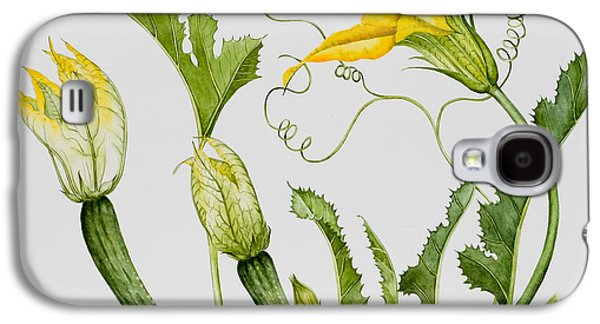 Green And Yellow Galaxy S4 Cases - Courgettes Galaxy S4 Case by Sally Crosthwaite