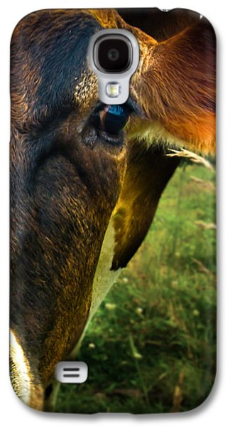 Maine Meadow Galaxy S4 Cases - Cow eating grass Galaxy S4 Case by Bob Orsillo