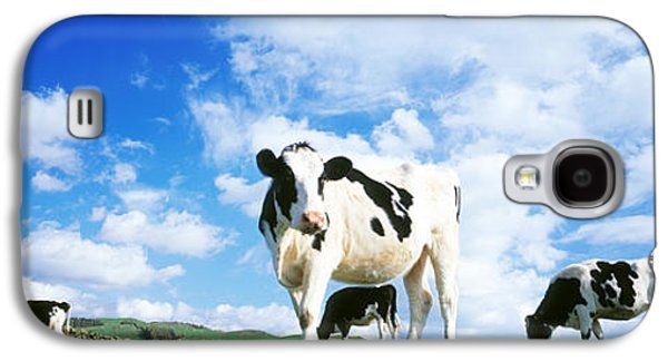 Cows In Field, Lake District, England Galaxy S4 Case by Panoramic Images