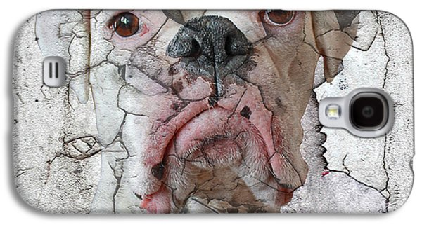 Recently Sold -  - Boxer Digital Galaxy S4 Cases - Cracking Up Galaxy S4 Case by Judy Wood