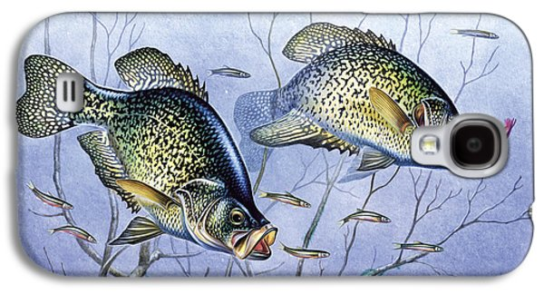 Tackle Galaxy S4 Cases - Crappie Brush Pile Galaxy S4 Case by JQ Licensing