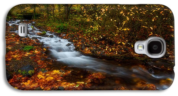 Landscape Acrylic Prints Galaxy S4 Cases - Creekside Colors Galaxy S4 Case by Darren  White
