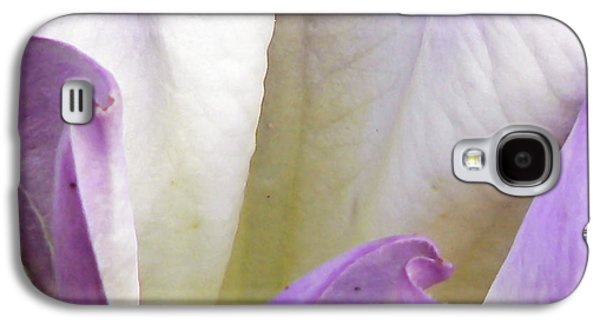 Wine Holder Galaxy S4 Cases - Creeping Jenny Flower Galaxy S4 Case by Pamela Patch