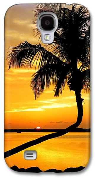 Crooked Palm Galaxy S4 Case by Karen Wiles
