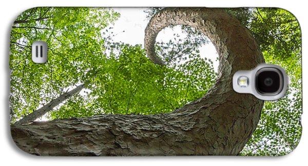 Fibonacci Galaxy S4 Cases - Crooked Spine Pine II Galaxy S4 Case by Bill Pevlor
