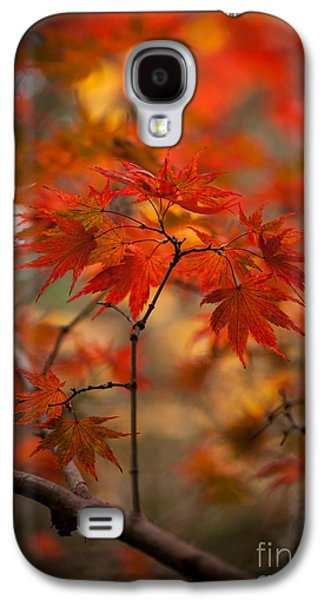 Recently Sold -  - Landscapes Photographs Galaxy S4 Cases - Crown of Fire Galaxy S4 Case by Mike Reid