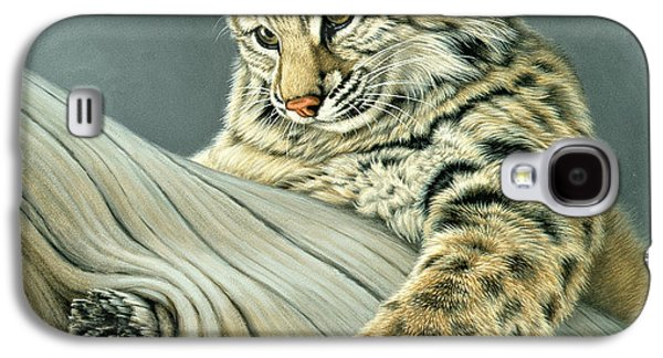 Kitten Galaxy S4 Cases - Curiosity - young bobcat Galaxy S4 Case by Paul Krapf