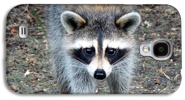 Raccoon Digital Art Galaxy S4 Cases - Curious Raccoon 1 Galaxy S4 Case by Sheri McLeroy
