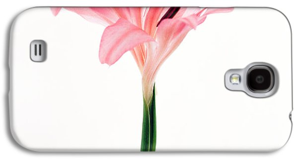 Studio Photography Galaxy S4 Cases - Cut Out Of Flower Galaxy S4 Case by Panoramic Images