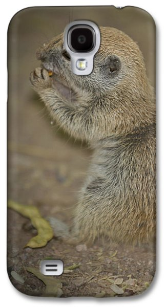 Recently Sold -  - Landmarks Photographs Galaxy S4 Cases - Cute Prairie Dog Galaxy S4 Case by Melanie Viola