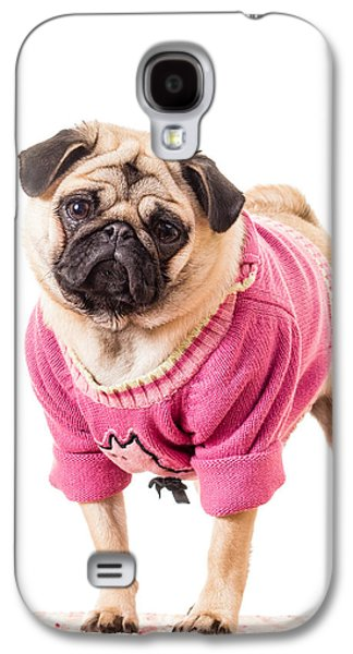 Dress Photographs Galaxy S4 Cases - Cute Pug wearing sweater Galaxy S4 Case by Edward Fielding