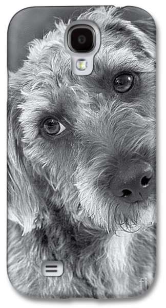 Dog Rescue Digital Galaxy S4 Cases - Cute Pup in Black and White Galaxy S4 Case by Natalie Kinnear