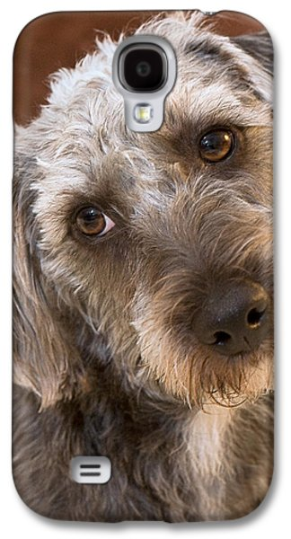 Dog Rescue Digital Galaxy S4 Cases - Cute Pup Galaxy S4 Case by Natalie Kinnear