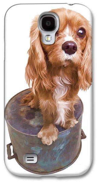 Studio Photographs Galaxy S4 Cases - Cute Puppy Card Galaxy S4 Case by Edward Fielding