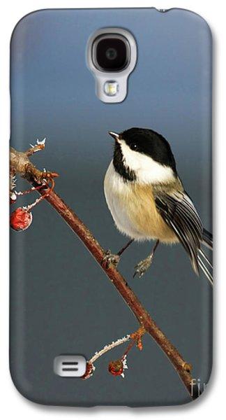 Deborah Benoit Galaxy S4 Cases - Cutest Of Cute Galaxy S4 Case by Deborah Benoit