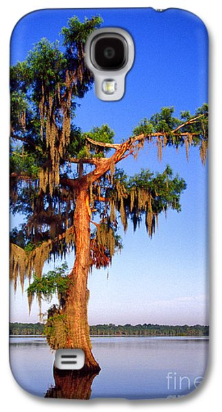 Cypress Tree Draped In Spanish Moss Galaxy S4 Case by Thomas R Fletcher