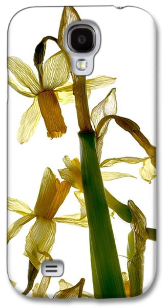 Botanical Digital Art Galaxy S4 Cases - Daffodil Galaxy S4 Case by Julia McLemore
