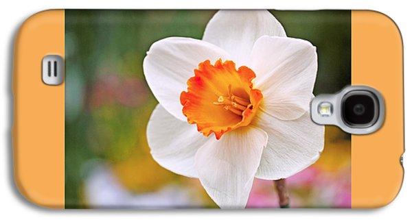Beautiful Galaxy S4 Cases - Daffodil  Galaxy S4 Case by Rona Black