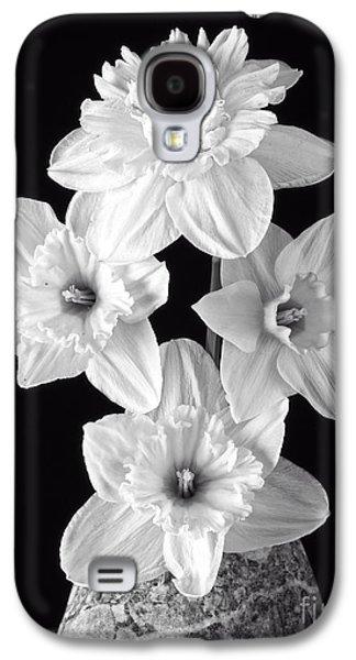 Brightly Galaxy S4 Cases - Daffodils Galaxy S4 Case by Edward Fielding