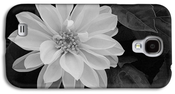 Recently Sold -  - Botanical Galaxy S4 Cases - Dahlia Galaxy S4 Case by Ellen Henneke