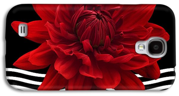 Dahlia Flower And Wavy Lines Triptych Canvas 2 - Red Galaxy S4 Case by Natalie Kinnear