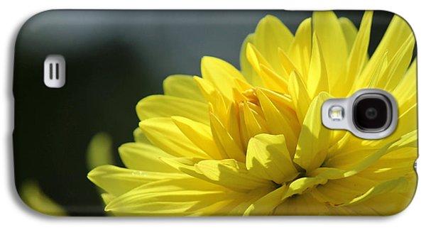 Fort Collins Galaxy S4 Cases - Dahlia Sun Galaxy S4 Case by Diana Walker