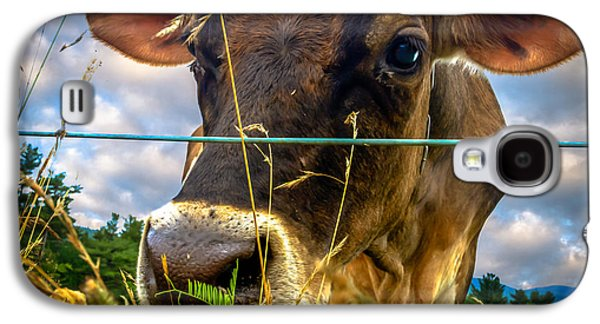 Uplifting  Galaxy S4 Cases - Dairy Cow Galaxy S4 Case by Bob Orsillo