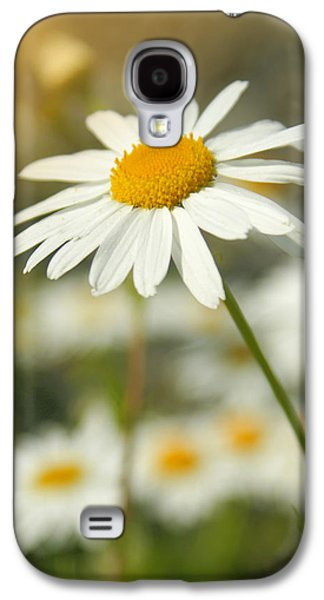 Variants Galaxy S4 Cases - Daisies ... again - original Galaxy S4 Case by Variance Collections