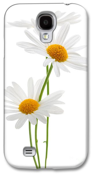 Daisies On White Background Galaxy S4 Case by Elena Elisseeva