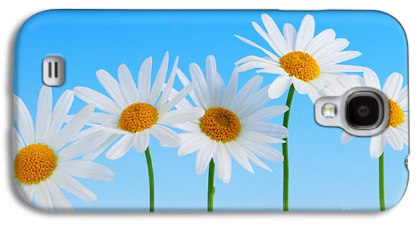 Garden Flowers Galaxy S4 Cases - Daisy flowers on blue background Galaxy S4 Case by Elena Elisseeva