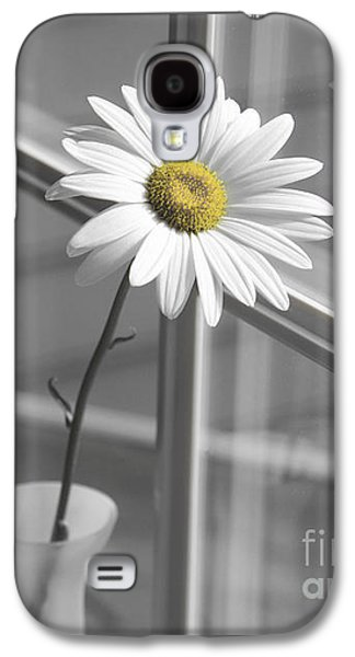 Melancholy Galaxy S4 Cases - Daisy in the Window Galaxy S4 Case by Diane Diederich