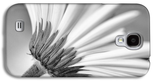 Contemplative Photographs Galaxy S4 Cases - Daisy Noir Galaxy S4 Case by Christi Kraft