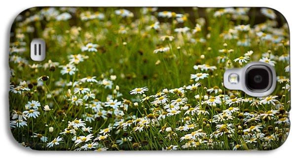 Daisy Sunrise Galaxy S4 Case by Sebastian Musial