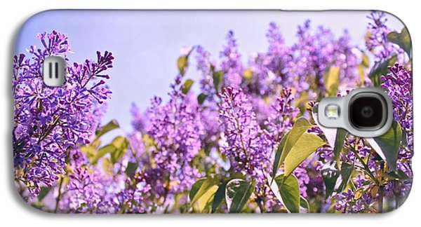 Original Photographs Galaxy S4 Cases - Dance of the Lilacs Galaxy S4 Case by Colleen Kammerer