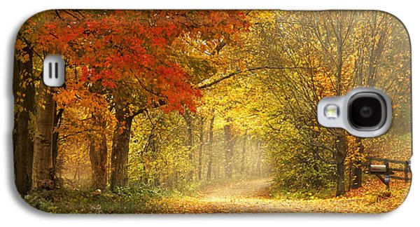 Autumn Landscape Photographs Galaxy S4 Cases - Dancing Leaves Galaxy S4 Case by Magda  Bognar