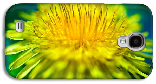 Flowers Photographs Galaxy S4 Cases - Dandelion Bloom  Galaxy S4 Case by Iris Richardson