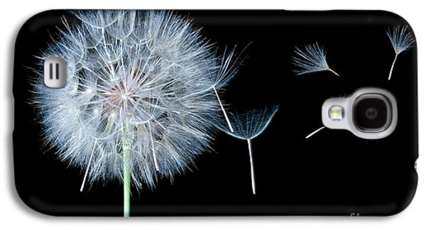Daydreams Photographs Galaxy S4 Cases - Dandelion Dreaming Galaxy S4 Case by Cindy Singleton