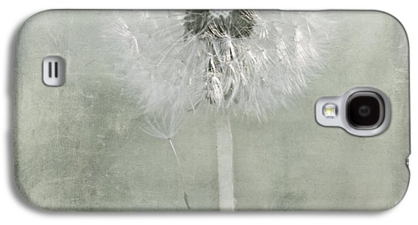 Flora Mixed Media Galaxy S4 Cases - Dandelion Galaxy S4 Case by Heike Hultsch