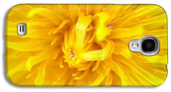 Garden Scene Mixed Media Galaxy S4 Cases - Dandelion in macro Galaxy S4 Case by Toppart Sweden